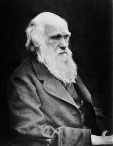 Portrait of Charles Darwin. Image