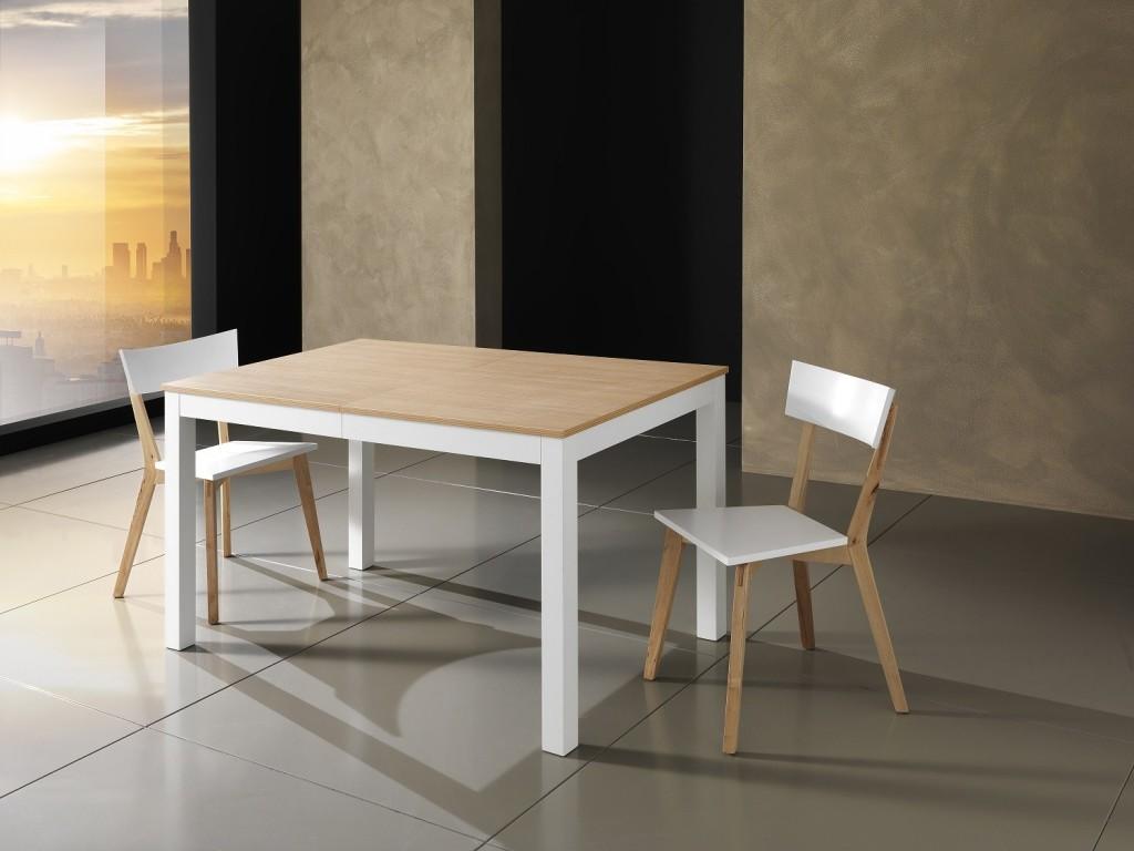 Tavoli e sedie  di bartolomeo  di casa in ogni casa