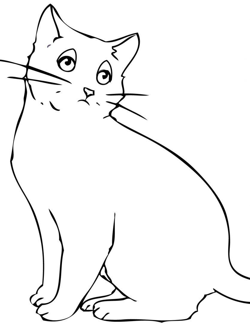 Dibujos Para Colorear Y Dibujos Infantiles En Dibucolor