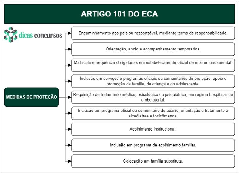 Art 101 do ECA - Comentado