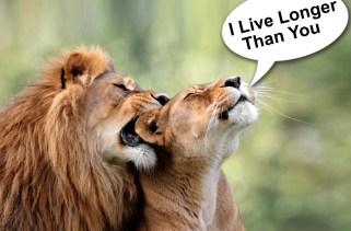 As fêmeas também vivem mais no mundo animal?