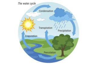 O Que É O Ciclo Hidrológico?