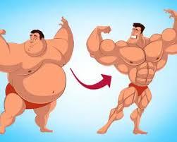Você pode mudar a gordura para os músculos quando se exercita?