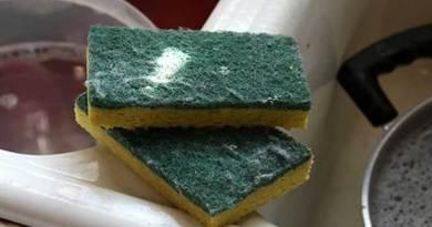 esponja de cozinha