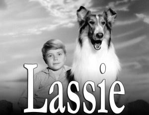 lassie-7-700x540