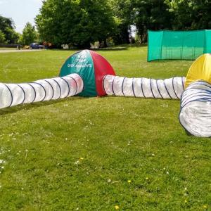 Kids Ball Crawl Maze