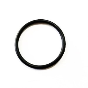 Oil Pump Pick Up Tube O-Ring (Fiat/Abarth 500)
