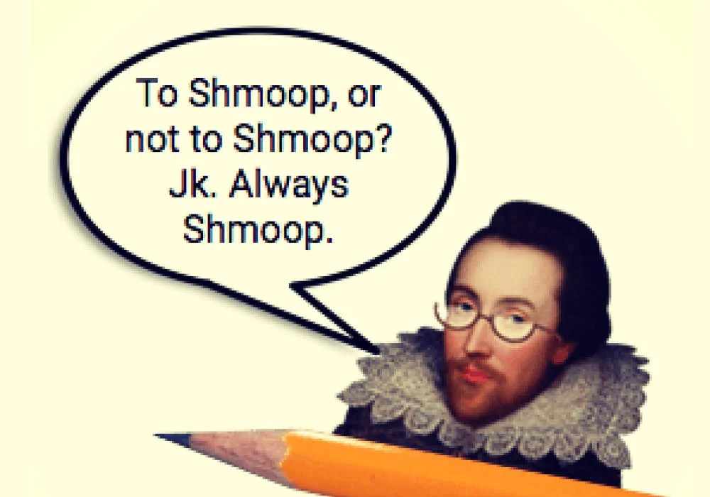 Shmoop is a popular book summary and literature study guide website similar to Sparknotes.