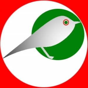 logo_tweetaly_v04