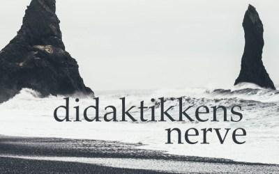 Didaktikken nerve