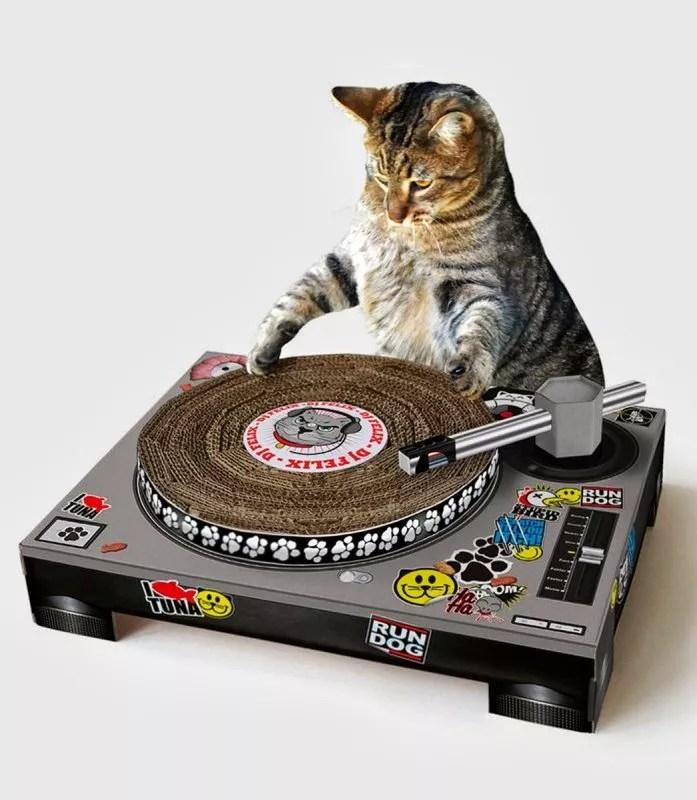 Cat DJ scratching desk