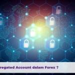 Apa Itu Segregated Account Dalam Forex?