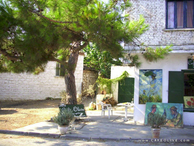 art-gallery-cafe-olive-akkoy