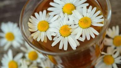 Kamille lindert Verdauungsbeschwerden und wirkt antibakteriell