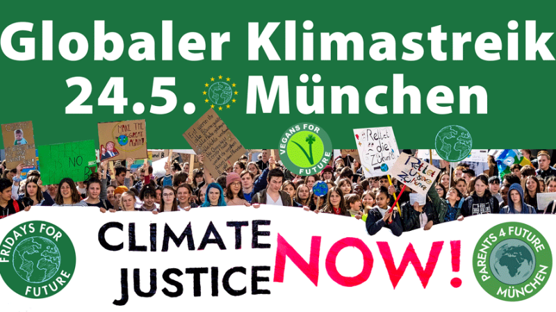 24.5.2019 - Globaler Klimastreik München - Global Strike for Climate - Munich