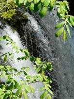 Scheidegger Wasserfälle 3, Allgäu
