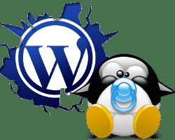 Curso Gestiona tu web o blog con WordPress