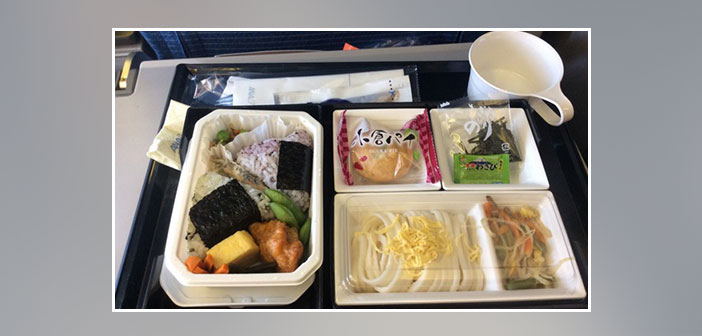 ANA-Airlines---Dinner-in-economy-class