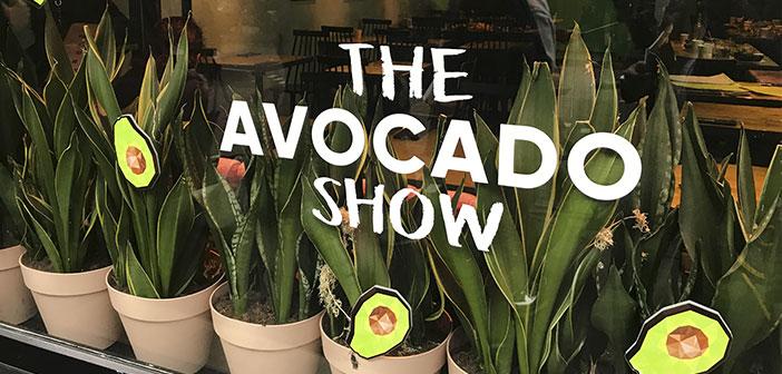 The Avocado Show: Primer restaurante de aguacate de Europa con platos muy bien presentados, innovadores y coloridos, utilizando siempre aguacate de máxima calidad y socialmente responsables y sostenibles.