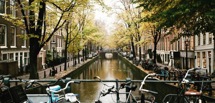 A modo de información general es interesante conocer que España triplica prácticamente el censo de habitantes de Holanda, que el paro de este país es solo el 5,6%. O que el sueldo anual de un trabajador medio en Ámsterdam es de 56.000€, a diferencia del medio en España 26.000€ y multiplica por más de 10 la superficie en Km2 de Holanda que es de 41.540 Km2.