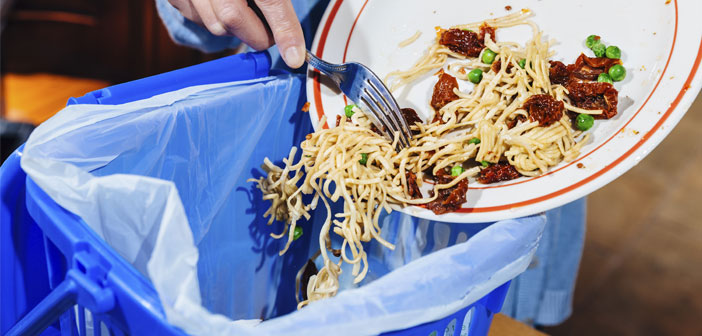 Waste management is increasingly gaining will care for any business and restaurants are no exception. Beyond the respect for the environment and the growing demand by the public for organic restaurants, proper waste management can have a significant impact on the income statement.