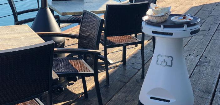 Penny est une société de technologie de barman robot spécialisé dans la robotique produit et dont le siège social dans la Silicon Valley, BearRobotics.