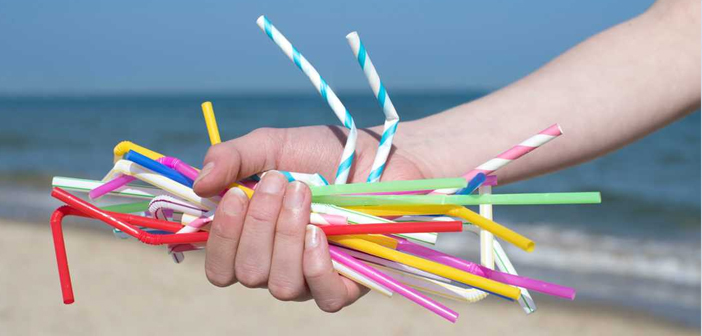 Establishments that depend on the plastic straws would, if the law remains approved, until 2020 to get rid of these disposable items.