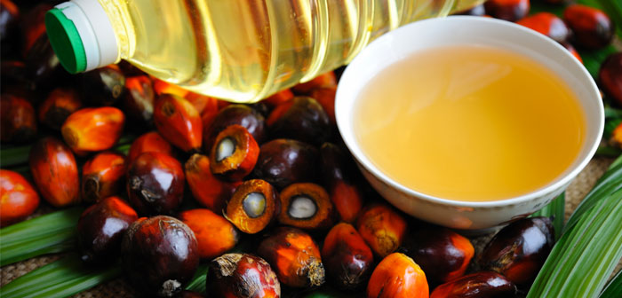 Palm oil is already in all kinds of products, from cosmetics to candles, but especially in processed foods.