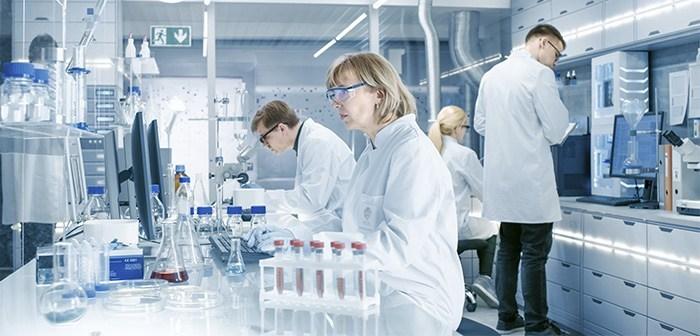 Une nouvelle étude de marché montre l'intérêt des consommateurs sur le marché du laboratoire de la viande une nouvelle étude montre l'intérêt des consommateurs dans le laboratoire de la viande
