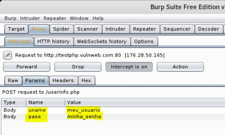 Burp Suite - Tela Params