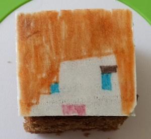 Minecraft (16)