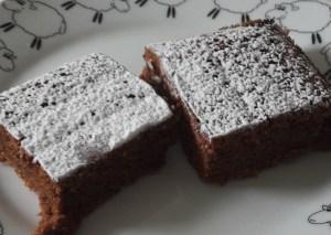 Gâteau au chocolat (19)