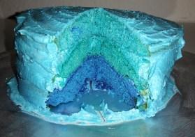 Ombré Kuchen (2)