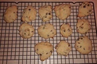 Nerdy Nummies Chocolate Chip Cookies