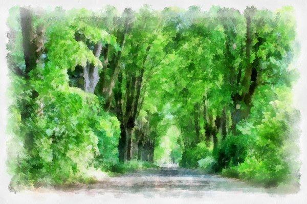 Waldweg Aquarell Leinwandbild auf Keilrahmen bestellen