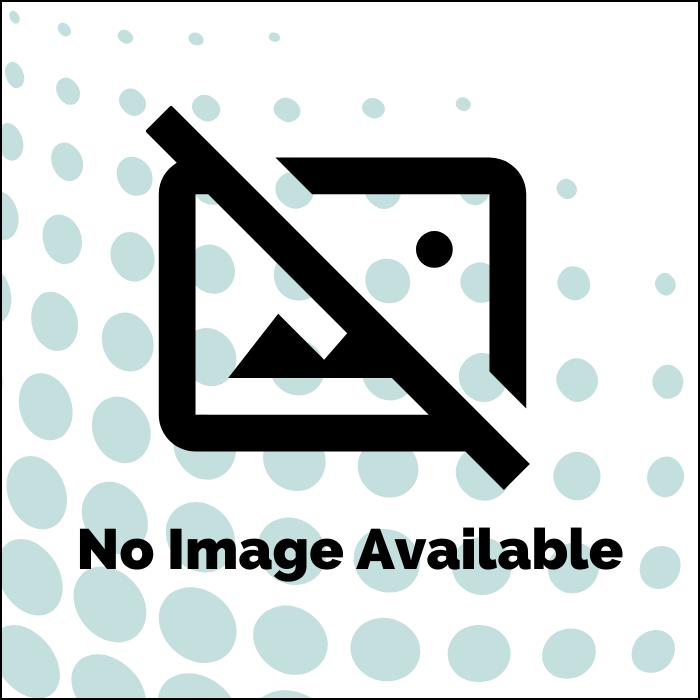 Delphi Fuel Filter Assembly 5862B010