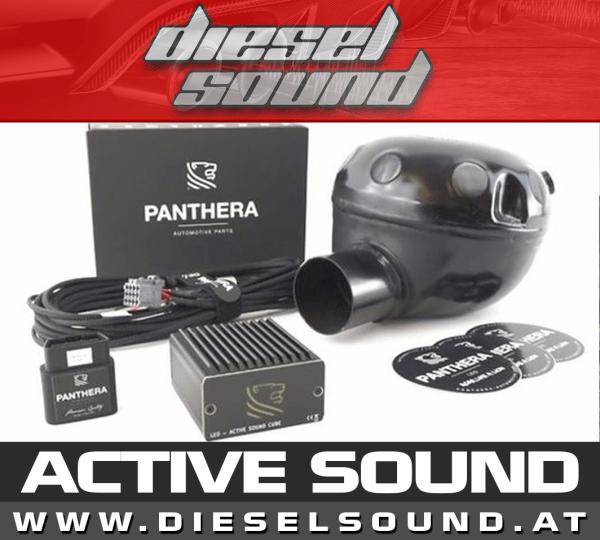 Panthera Leo Active Sound