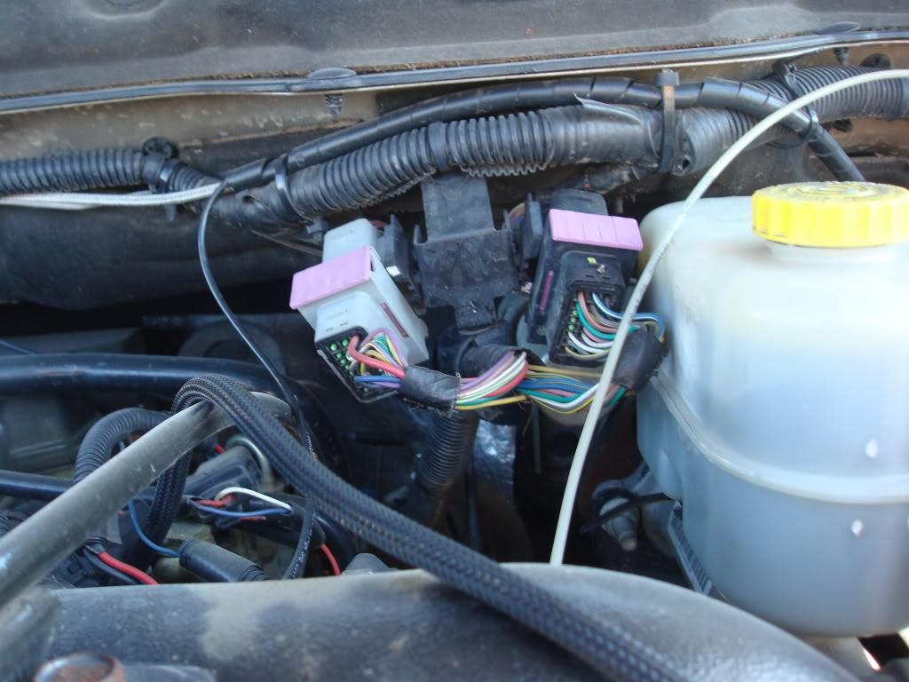 Swap Wiring Harness Dodge Cummins Engine Wiring Harness Wiring Harness