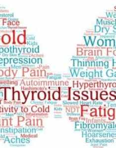 also indian diet plan for hypothyroidism weight loss in hypothyroid rh dietburrp