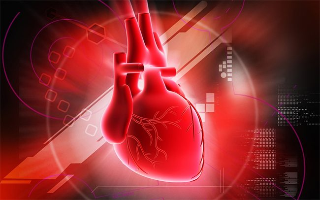 Broken Heart Animation Wallpaper Spectacular Study On Heart Failure And The Supplement