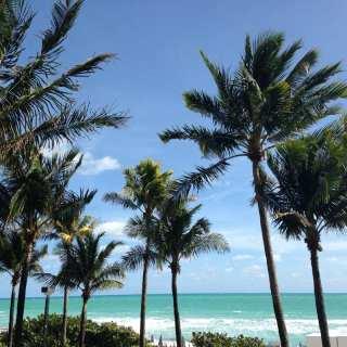 WIAW in Miami (and trip recap!)