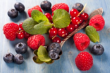 Berries mix The Diet of the Common Sense