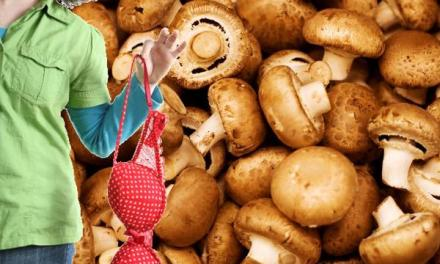 Does Mushroom Diet Really Keep Your Bust Size and Lose Unwanted Weight?