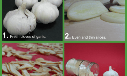 How to Make Garlic Powder (with Video)