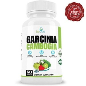2 x BOTTLES 120 Capsules Daily GARCINIA CAMBOGIA Weight Loss Diet