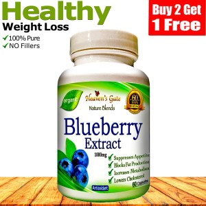 BLUEBERRY EXTRACT 100% PURE 1000MG WEIGHT LOSS DIET ANTIOXIDANT*