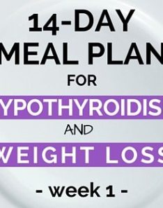 also day meal plan for hypothyroidism and weight loss rh dietvsdisease