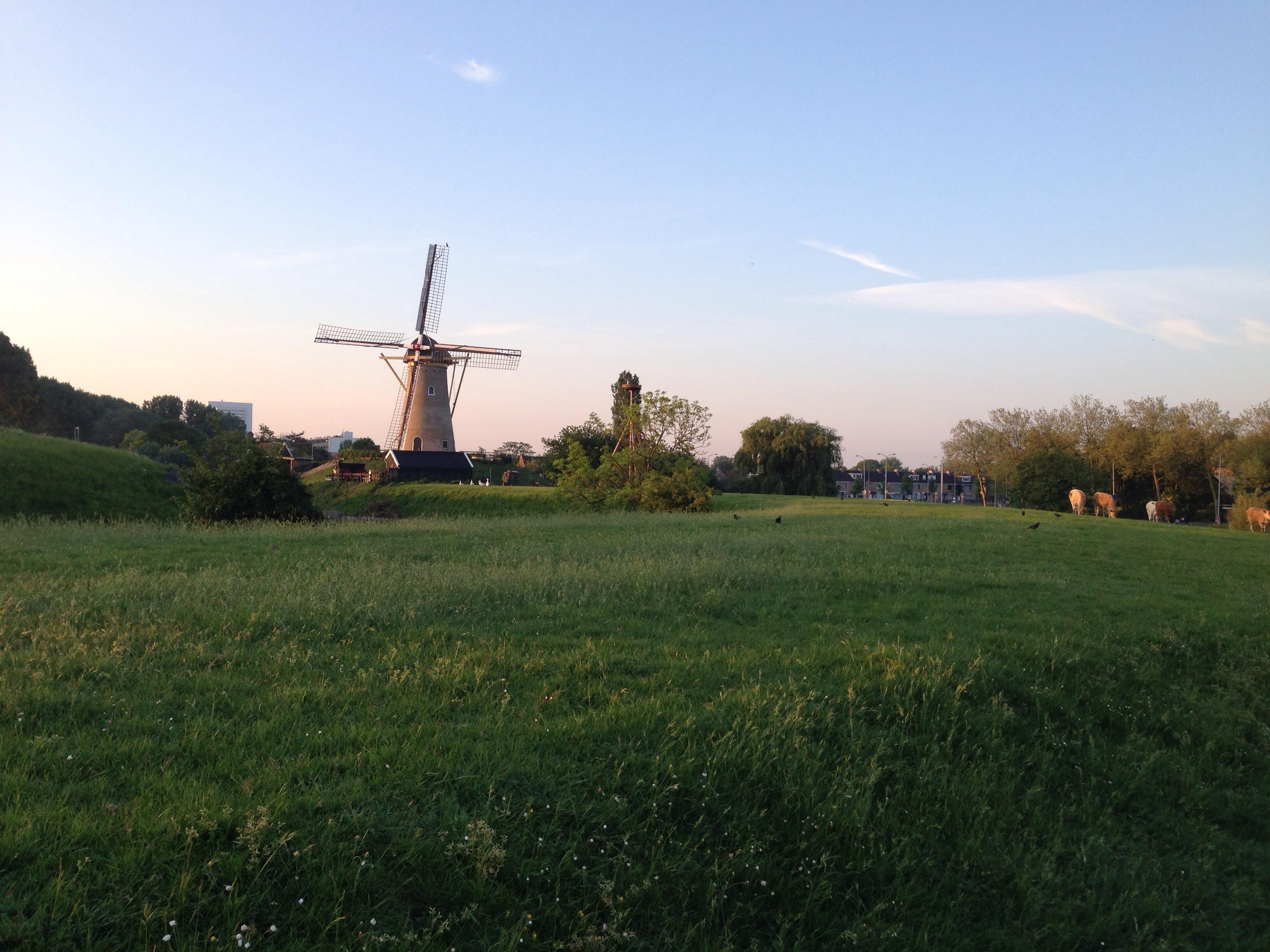 hardlopen rondje molen