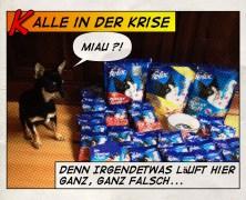 Gewinne 4 x 10€ Gutscheine für Felix Crunchy & Soft Katzenfutter