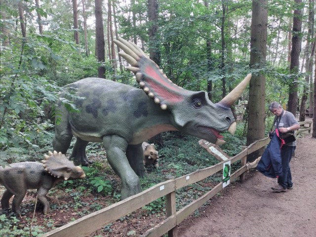Dinotreffen Münchehagen 2021 6